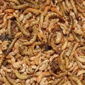 Insectenmix 175 gram