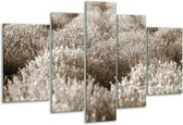 Glas schilderij Bloemen | Sepia | 170x100cm 5Luik | Foto print op Glas |  F006476
