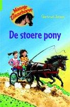 Manege de Zonnehoeve 1 - De stoere pony