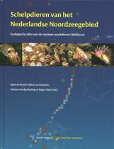 Schelpdieren van het Nederlandse Noordzeegebied