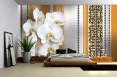 Fotobehang Vlies | Bloemen, Orchidee | Wit, Oranje | 368x254cm (bxh)