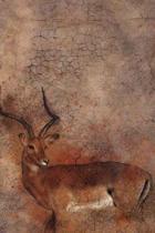 Wildlife (Journal / Notebook)