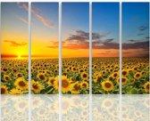 Schilderij - Zonnebloemen, geel,blauw,  5 delen