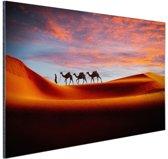 Woestijn met kamelen Aluminium 90x60 cm - Foto print op Aluminium (metaal wanddecoratie)
