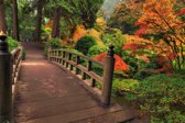 Papermoon Autumn Bridge Vlies Fotobehang 400x260cm 8-Banen