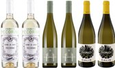 Lentewijnen - Witte Wijn - 6 x 75 cl - Doos