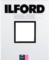 ILFORD MGD 44M 24 X 30,5 50 V