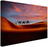 Woestijn met kamelen Canvas 80x60 cm - Foto print op Canvas schilderij (Wanddecoratie)