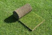 Minimaal 30 stuks afnemen,  Graszoden Queens Grass voor speelgazon minimaal 30 stuks