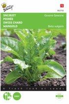Snijbiet Groene Gewone 5 g - Beta vulgaris - set van 9 stuks