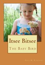 Itsee Bitsee the Baby Bird