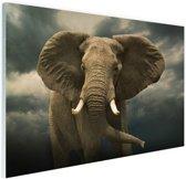 Afrikaanse olifant donkere wolken Glas 90x60 cm - Foto print op Glas (Plexiglas wanddecoratie)