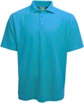 Polo Basic Heren Lichtblauw/-groen