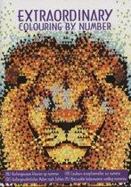 Buitengewoon kleuren op nummer - Dieren - Volwassenen - Kleuren - Kleurboek - Colouring by Number - Tekenpuzzels