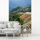 Fotobehang vinyl - Overzicht over de Rijstterrassen van Lóngjĭ breedte 270 cm x hoogte 400 cm - Foto print op behang (in 7 formaten beschikbaar)