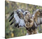 Close-up van een ruigpootbuizerd Canvas 90x60 cm - Foto print op Canvas schilderij (Wanddecoratie woonkamer / slaapkamer)