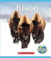 Bison (Nature's Children)