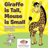 Giraffe Is Tall, Mouse Is Small Opposites Book for Kids