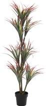 ComfortTrends Kunst plant Yucca Hoogte: 150 cm - Luxe uitvoering