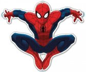 Ultimate Spider-Man raampuzzel
