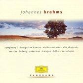 Panorama: Johannes Brahms
