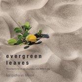 Evergreen Leaves