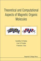 Theoretical and Computational Aspects of Magnetic Organic Molecules