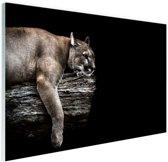 Liggende poema Glas 90x60 cm - Foto print op Glas (Plexiglas wanddecoratie)