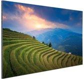Rijstveld zonsondergang Aluminium 90x60 cm - Foto print op Aluminium (metaal wanddecoratie)