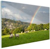 FotoCadeau.nl - Schapen onder levendige regenboog Glas 30x20 cm - Foto print op Glas (Plexiglas wanddecoratie)