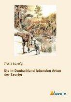 Die in Deutschland lebenden Arten der Saurier