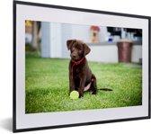 Foto in lijst - Labrador Retriever puppy met een tennisbal fotolijst zwart met witte passe-partout klein 40x30 cm - Poster in lijst (Wanddecoratie woonkamer / slaapkamer)