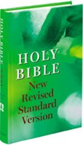 New Revised Standard Version Bible