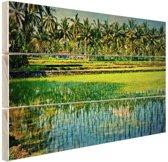 Rijstvelden en palmbomen in Azie Hout 160x120 cm - Foto print op Hout (Wanddecoratie) XXL / Groot formaat!