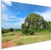 Landschap van de Vallei de Viñales in Cuba met ronde mogote heuvels Plexiglas 60x40 cm - Foto print op Glas (Plexiglas wanddecoratie)