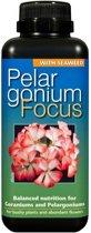 Geranium Focus 300ml | Voor de mooiste Geraniums van de hele buurt!