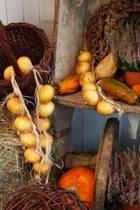 Autumn Harvest Journal
