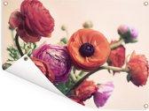 Roze en oranje boterbloemen Tuinposter 40x30 cm - klein - Tuindoek / Buitencanvas / Schilderijen voor buiten (tuin decoratie)