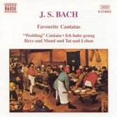 Bach J. S.: Favourite Cantatas