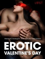 Erotic Valentine s Day - 5 erotische verhalen