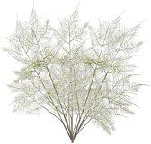 5x Kunstplanten aspergeplant takken 80 cm groen - Kunstbloem/nepbloem - Kunstplanten/nepplanten