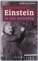 Einstein in een notendop