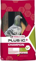 Versele-laga i.c.+ champion plus sport