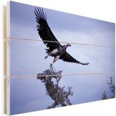 Oorgier vliegt over het water Vurenhout met planken 90x60 cm - Foto print op Hout (Wanddecoratie)
