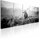 Schilderij - Hert in Zwart/Wit  ,  5 luik