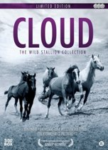 Cloud - The Wild Stallion Collection