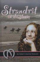 De pony's van de Pegasus 6 - Strandrit in de storm