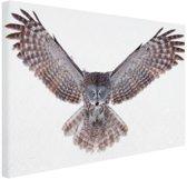 FotoCadeau.nl - Vliegende uil Canvas 60x40 cm - Foto print op Canvas schilderij (Wanddecoratie)