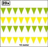 20x Vlaggenlijn groen en geel 10 meter