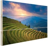 Rijstveld zonsondergang Hout 160x120 cm - Foto print op Hout (Wanddecoratie) XXL / Groot formaat!
